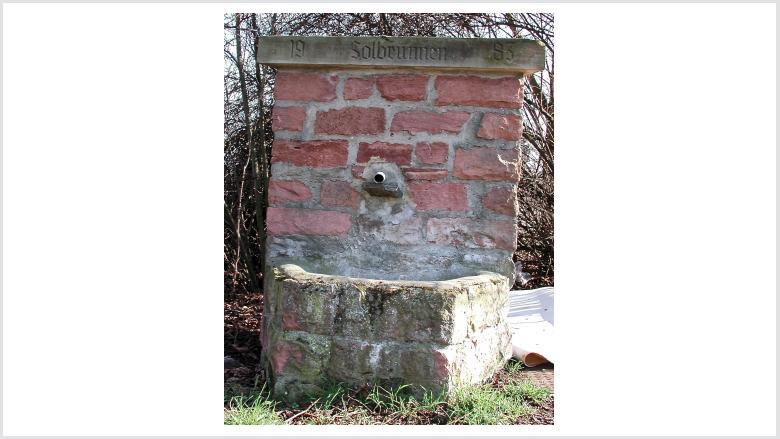 Erhaltung der Dienheimer Denkmäler